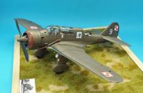 PZL 23B Karaś - 2 Eskadra Bombowa lekka